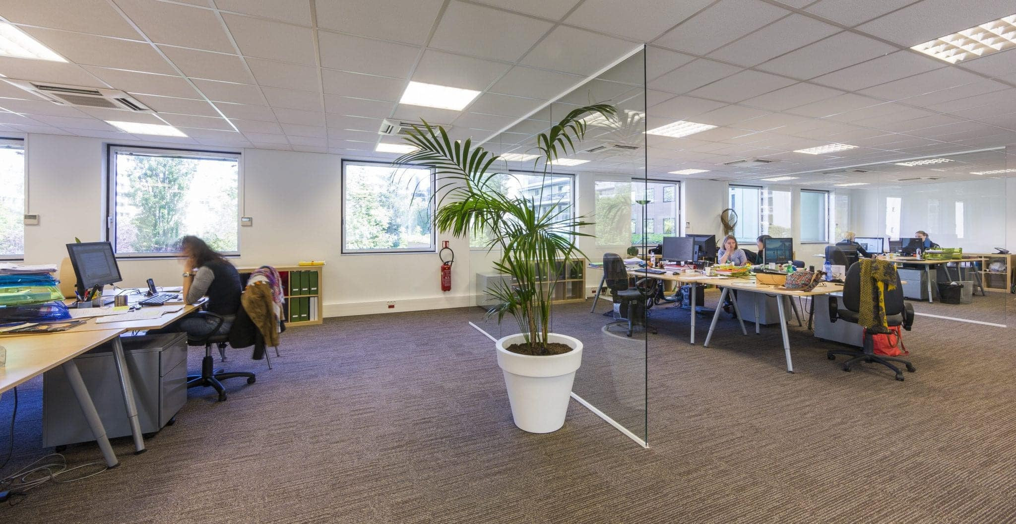 Architecte Open space - Installateur de cloisons design